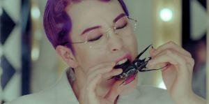 p.o_eats_beetle